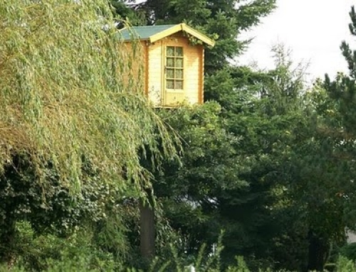 Log Cabin Technology Reaches Soaring New Heights