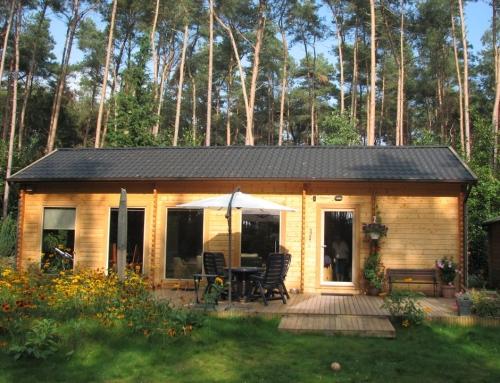 Mr Hemming's cabin
