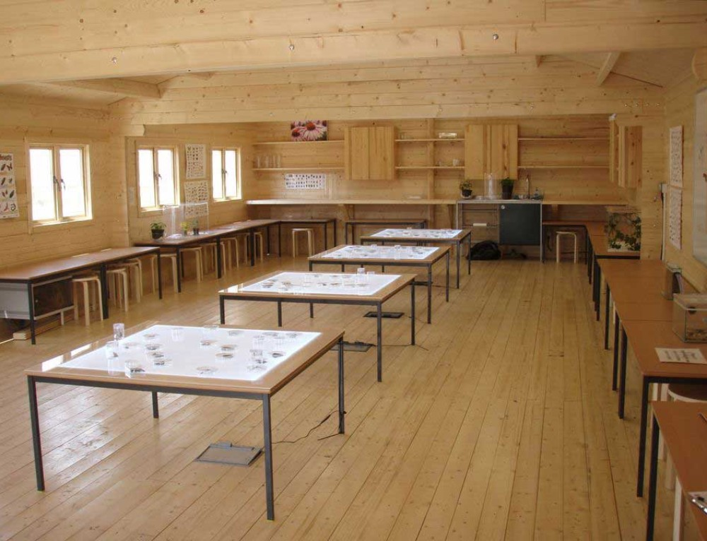 Timber built classrooms can have a positive impact on students