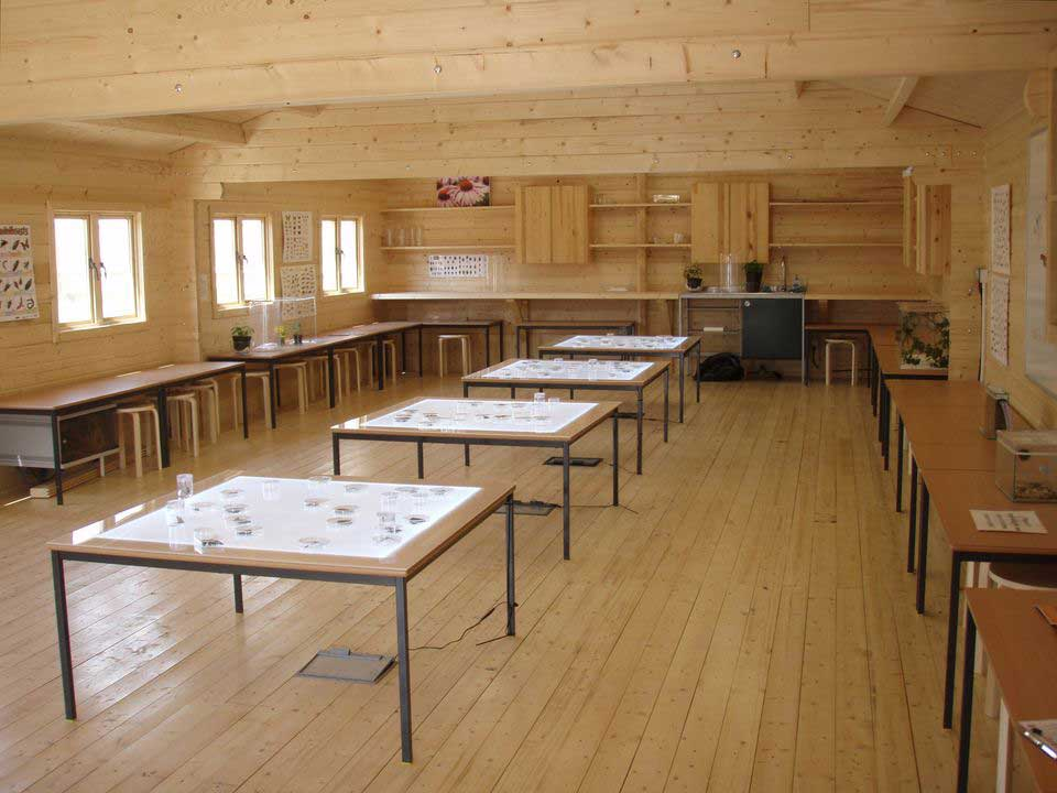 Timber log cabin classrooms can reduce stress in pupils