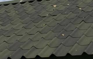 Shaded green villa roofing