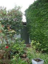 Log cabin art studio nestled in a corner of the garden